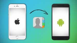 """Cách chuyển danh bạ từ iPhone sang Android trong vòng """"một nốt nhạc"""""""