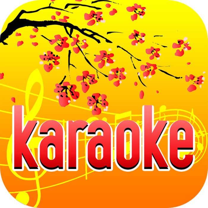 ung-dung-hat-karaoke-tren-dien-thoai-1
