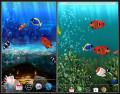Cài Hình Nền Động Cực Chất Cho Mọi Máy Android