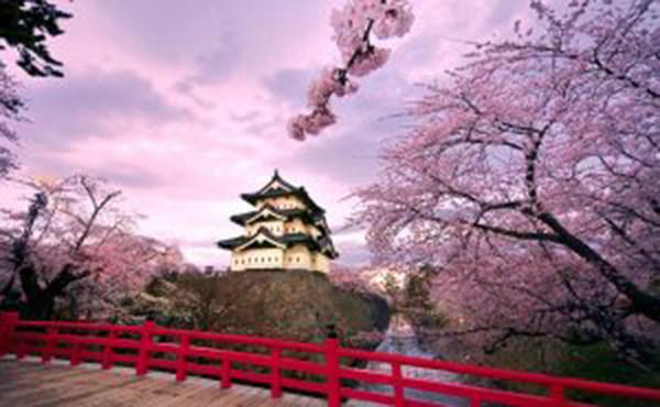 Phần mềm học tiếng Nhật nào tốt cho bạn?