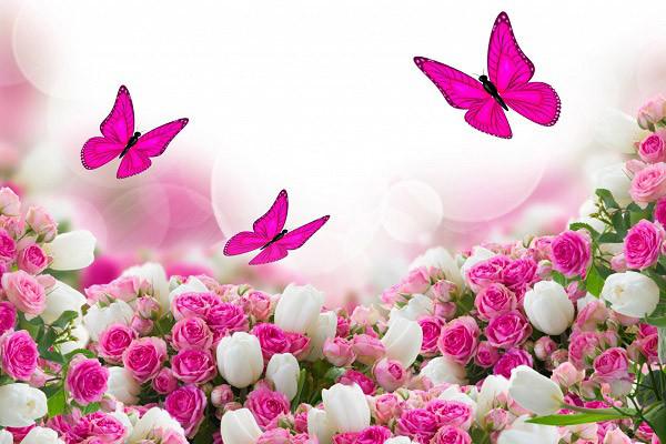 Hình nền hoa đẹp cho điện thoại - Ảnh 01