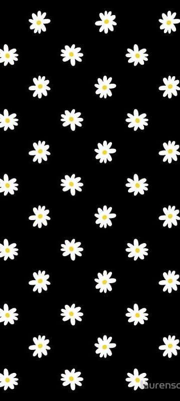 Hình nền hoa cúc trắng 8