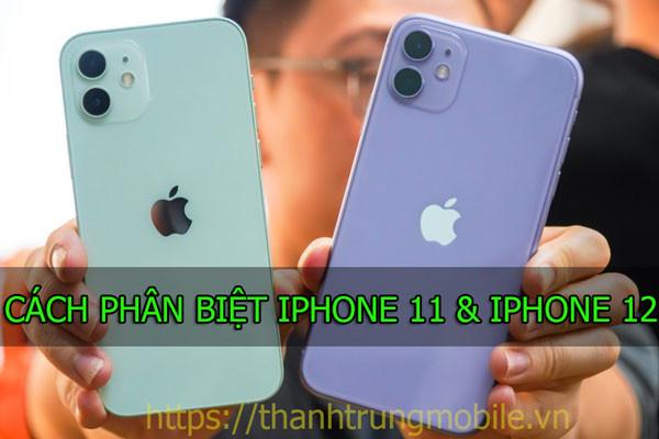 Hướng dẫn cách phân biệt iPhone 11 và iPhone 12 khi chúng có ngoại hình khá giống nhau