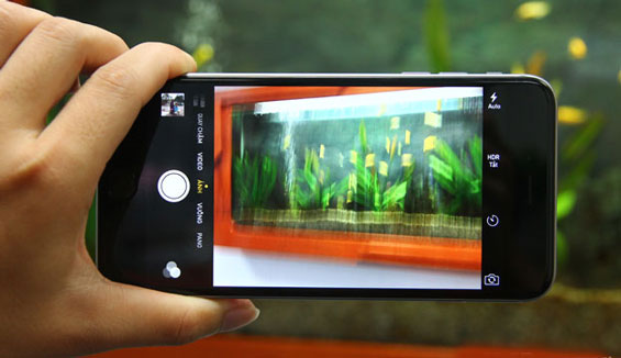 Bạn đã biết cách xử lý khi camera iPhone 6 bị mờ chưa?