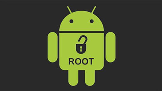 root-la-gi
